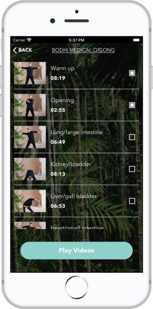 Bodhi Medical Qigong App Screenshot