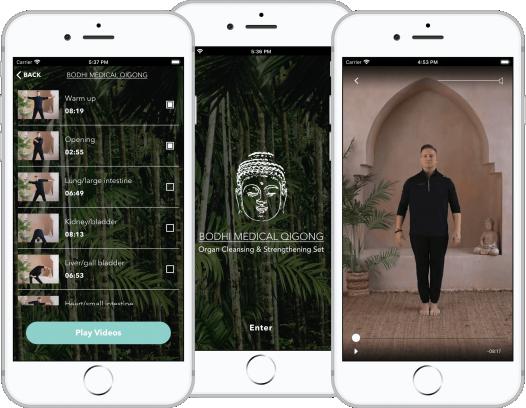 Bodhi Medical Qigong Mobile App Promo Image
