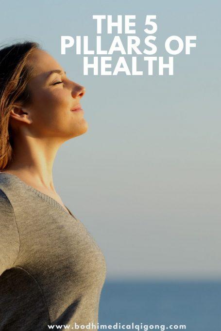 pillars-of-health-PIN